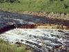 Водопад на реке Тосна. 2000 год.