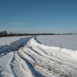 Расчищенная дорога к д. Реброво
