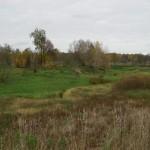 Расчищенный парк усадьбы Марьино