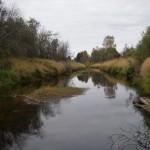 Река Тосна в ур. Новая Деревня