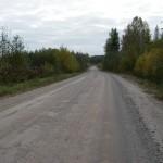 Новая дорога на д. Гришкино