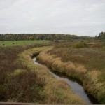 Река Тосна у д. Гришкино