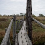 Мост через Тосну у д. Федосьино