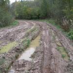 Дорога перед деревней Большое Васильевское