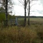 Братская могила за д. Каменка