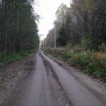 Дорога в д. Конечки, идущая по насыпи бывшей ж.д. Чудово-Веймарн.