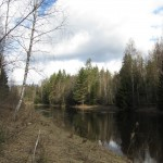 Река Тосна