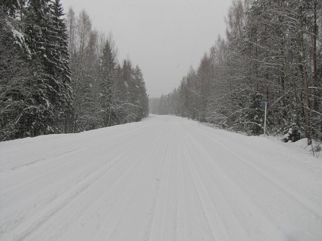 Дорога от пос. Шапки в сторону д. Костуя.