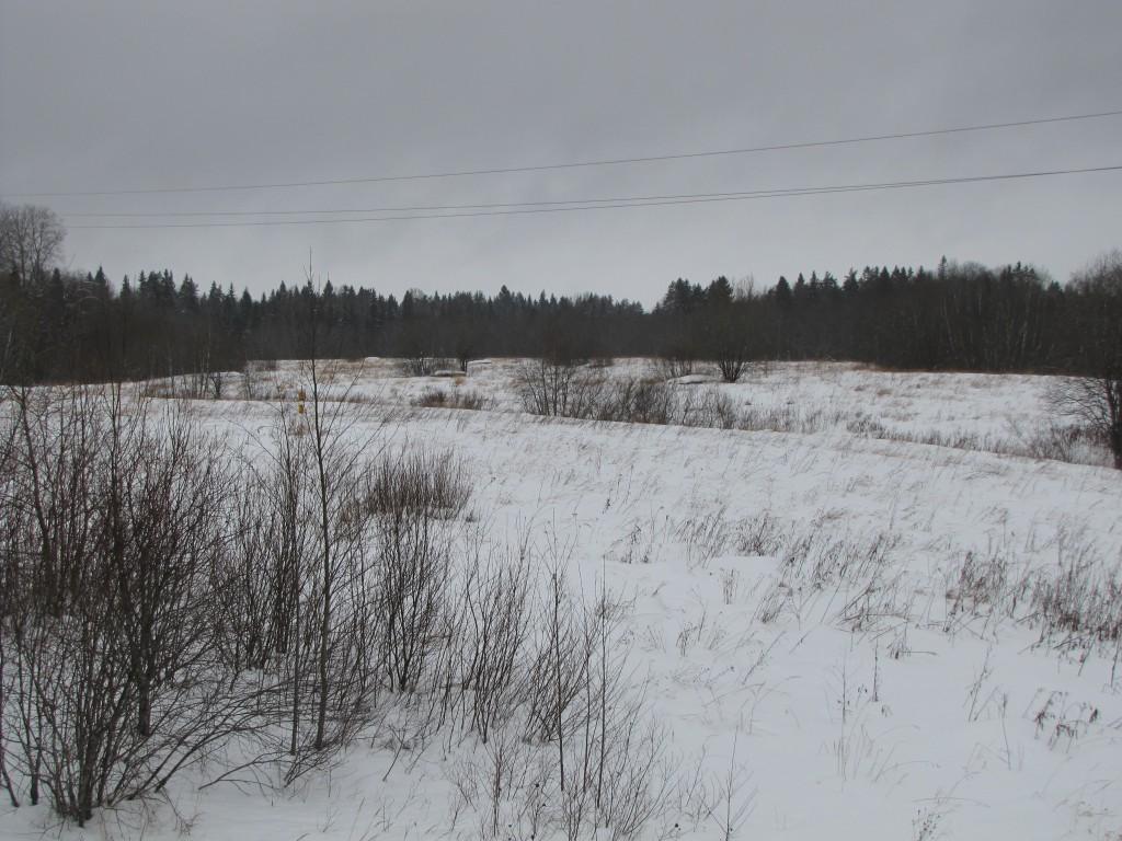Немецкие ДОТы севернее дороги, на правом берегу р. Чудля.