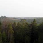 Вид с горы Приозёрная на север.