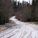 Дорога вдоль Оредежа.