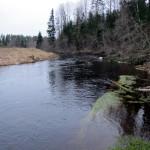 Река Оредеж.