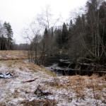 Устье реки Орлинки.