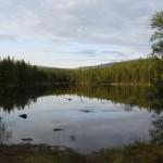 Безымянное озеро слева от дороги.