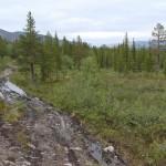 Долина реки Кунийок, дорога к базе КСС.