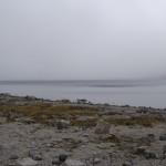 Туман над озером Академическим.