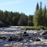 Река Тунтсайоки.