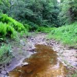 Рагуша, вода в речке закончилась.