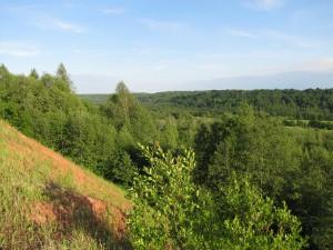 Вид на долину реки Воложбы.