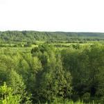 Долина реки Воложбы.