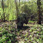 Каменный крест на старом кладбище.