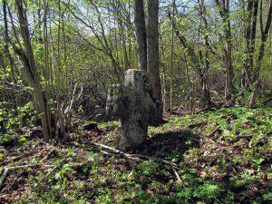 Каменный крест на заброшенном кладбище.