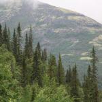 Вид со смотровой площадки на горе Куэльпорр