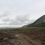 Вырубка в долине Кунийока.